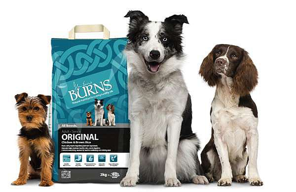 pack-shot-with-dogs